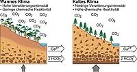 """""""Reaktivere"""" Landoberflächen kühlten die Erde ab"""